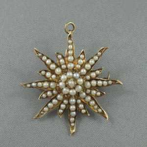 Broche/Pendentif, étoile en or 14K jaune avec perles, B6070-1