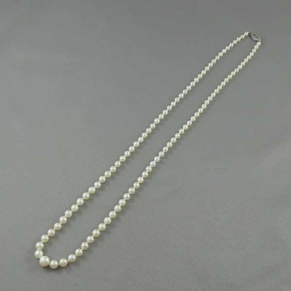 Collier Perles Akoya, 10K blanc, B6360-1