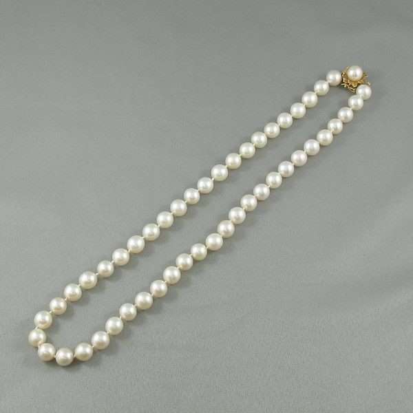 Collier perles Akoya, 14K jaune, B6656-2