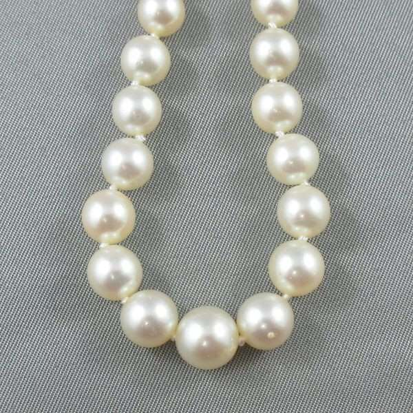 Collier Perles Akoya, 14K blanc, B6664-2